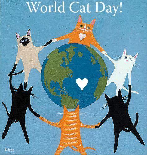 Cat-Day